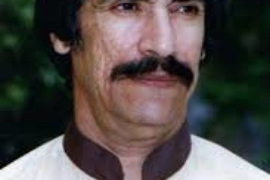 یادی از یک عاشق علی:استاد سید نورالدین رضوی سروستانی