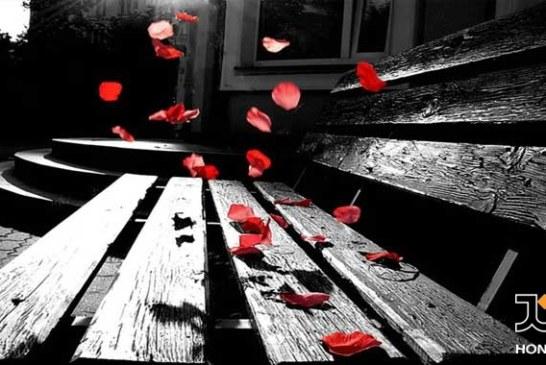 گلهای ماندگار:به یاد زنده یاد بانو جمیله بی نیاز