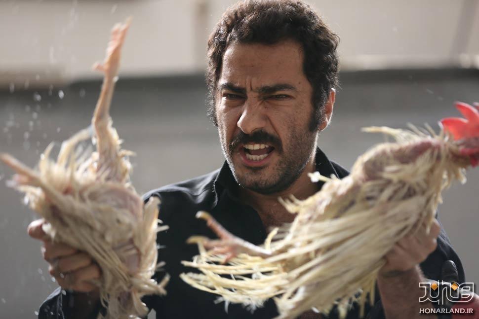 بدون تاریخ بدون امضا | برنده دو جایزه از جشنواره فیلم ونیز