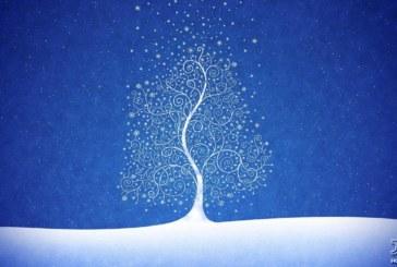 چون درختی اندر اقصای زمستان | پاره دلی نثار اندوه از دست دادن اردلان عطارپور| اصغر رمضان پور